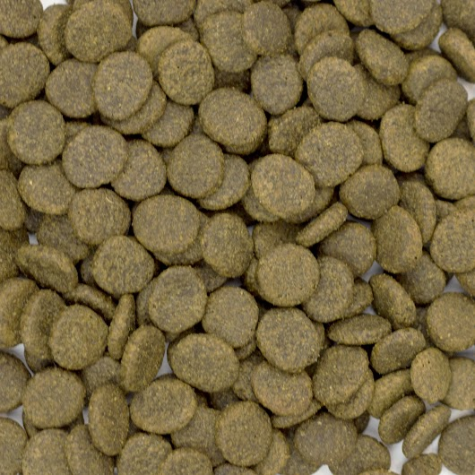 Turkey And Sweet Potato Dried Dog Food Uk